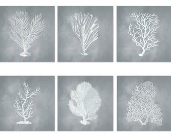 Coral Print Set of 6, Square Prints, Coastal Art, Corals in Seafoam Gray, Poster, Nautical Wall Art, Beach Decor, Nautical Print Set