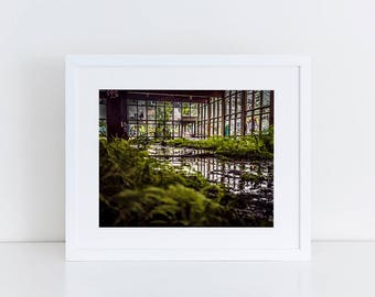 Mossy Indoors - Urban Exploration - Fine Art Photography Print