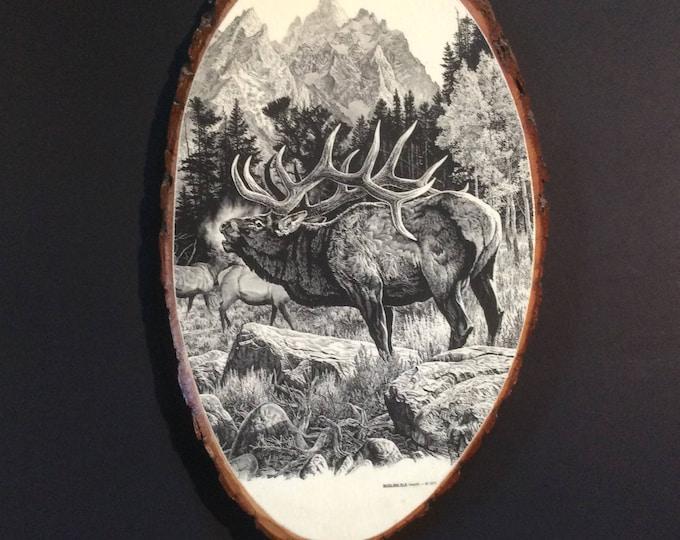 Decoupaged elk, seventies decor Elk decoupaged on slab of wood, retro decor, 1970's decor, man cave decor, great gift for him,