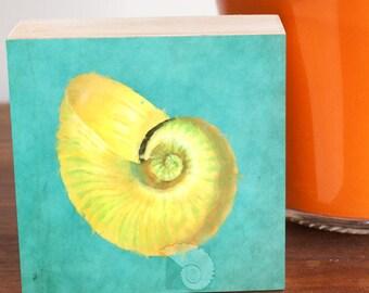 Nautilus shell, shell painting, 4x4, art gift, digital art, coastal art, coastal decor, beachy gifts, home decor, shelf decor, shelf sitter