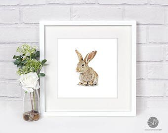 Bunny Rabbit Framed Print Artwork Picture