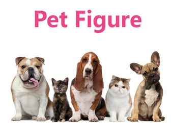 Pet Figure Addon  - Personalised wedding cake topper  (Free shipping)