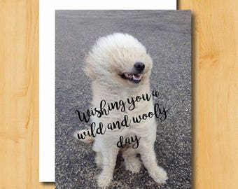 Birthday Card | Dog Birthday Card | Humorous Birthday Card | Birthday Card for Girlfriend | Birthday Card for Friend