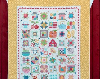 Farm Girl Vintage Lori Holt Bee in my Bonnet Quilt Book 48 Block Pattern Plus More
