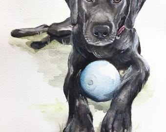 PET PORTRAIT, custom, dog, dog portrait, cat portrait, custom pet painting, animal painting, dog cat watercolor, watercolour, dog portrait