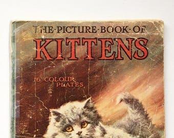 Vintage cat book childrens cat and kitten illustration book