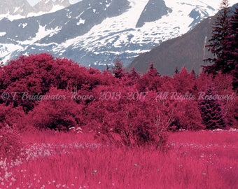 Alaska Photography on Canvas, Photo on Canvas, Mountain Photography, Nature Photography, Landscape Art,Landscape Photography, Pink Wall Art