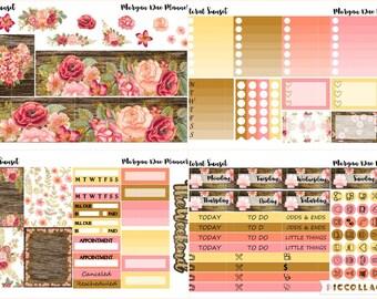 Floral Sunset Mini Kit / Erin Condren Life Planner