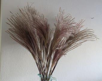 """pampas grass centerpiece,18 stems , long 65 cm, 25.6 """""""