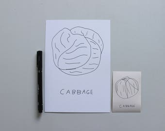 I will draw you a Cabbage. (Cabbage portrait)