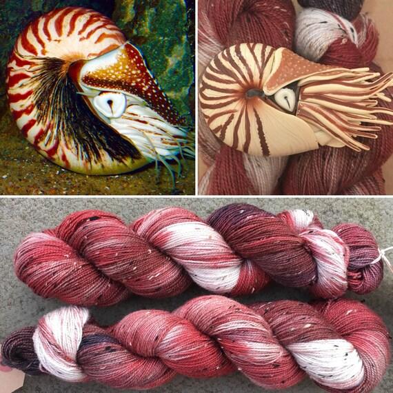 Nautilus Donegal Sock, cephalopod inspired merino yarn
