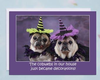 Funny Halloween Card - Thanks Halloween - 5x7