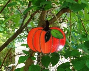 Bright Orange Fall Pumpkin