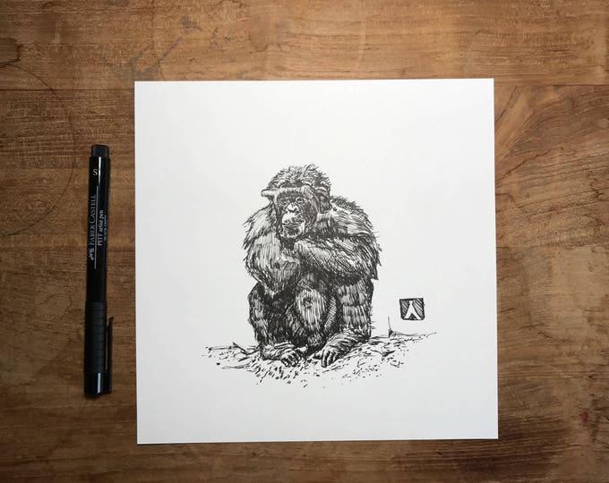 KillerBeeMoto: Original Pen Drawing of a Chimpanzee