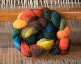 Roving Rainbow Polwarth Wool Hand-dyed