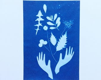 Plants Are Magic - original cyanotype 8x10