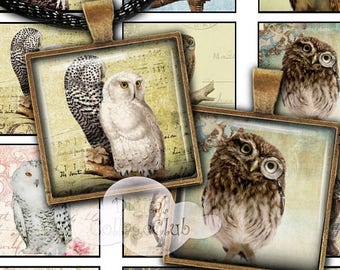 """80 % off Graphics SaLe Owls 1"""" x 1"""" Digital Collage Sheet 1 Inch Square Tile Images for Jewelry Making, Pendants, Scrapbooking, Decoupage, C"""