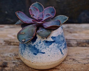 Blue and white succulent planter~ small handmade ceramic plant pot.