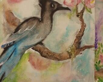 Original watercolour painting, bird painting. Stellar Jay with magnolias.