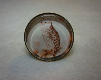 Perched OWL ring