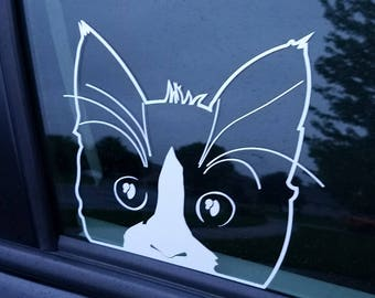 Peaking Cat Window Decal