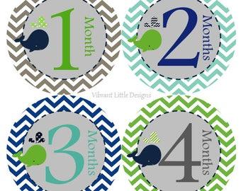 Month to Month Stickers Boy, Milestone Stickers, Month Stickers, Baby Month Stickers, Baby Stickers, Chevron, Whale #60