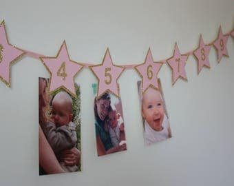 12 Month Photo Banner, 1st Birthday Photo Garland, Twinkle Twinkle Little Star Party, Pink and Gold 1st Birthday, 1st Birthday Photo Prop