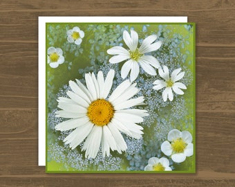 White Daisies © card, Mothers Day card, mum birthday card, gardeners card, photographic flowers card, get well soon card, thinking of you
