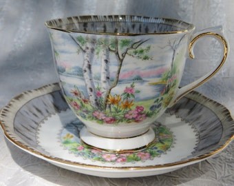 "Stunning Royal Albert ""Silver Birch"" Vintage Tea Cup and Saucer"