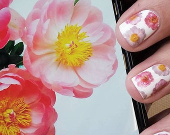 Pretty Peony Nail Decals - Photographs, Waterslide, Flowers, Pink, Summer