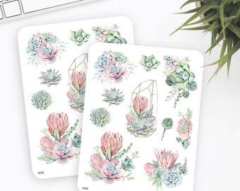 W55 | Succulent Stickers | Decorative Stickers | Watercolor Stickers | Planner Stickers | Bullet Journal Stickers