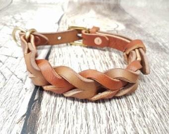 Braided Leather Martingale/Limited Slip Dog Collar