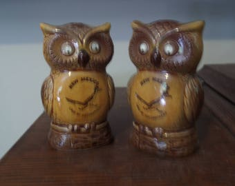 Owl Salt and Pepper Shakers.  Vintage New Mexico