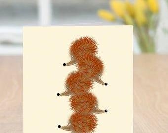 Hedge Fun - Cute and Quirky Hedgehog Card (Blank Inside)