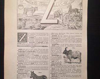 Letter Z - Initial Print - Antique French Dictionary Page - Original 1940s Lithograph