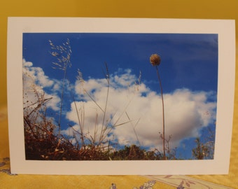 Any occasion photo card - Blue sky in Roquecourbe-Minervois