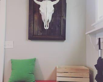 REAL buffalo skull, mounted and framed.