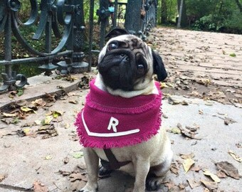 Personalized dog bandana, dog collar, dog clothes, dog birthday, dog owner gift, dog gift, pug, dog scarf, dog necklace, dog accessory