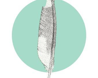 Feather print, bird art, ornithology illustration