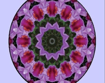 The Oneness Process: Appreciative Inquiry for Awakening Our Universal Wisdom