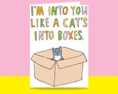 Greeting Card - I'm Into You Like A Cat's Into Boxes | Valentine's Day Card | Romantic Card