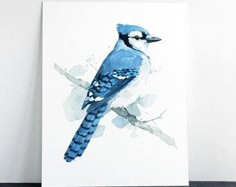 Blue Jay Original Watercolor Painting, bird art