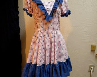 Vintage Swing Dress Blueberries Novelty Print Patriotic Ruffles Independence Day Square Dance Full Skirt Costume