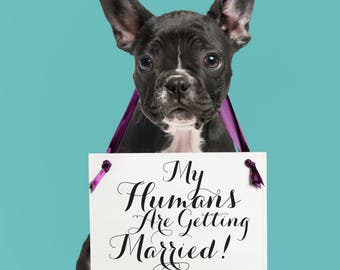 My Humans Are Getting Married Wedding Engagement Announcement Sign | Hanging Dog Banner Handmade in USA Modern Script Font 1064 BW