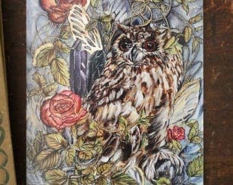 Owl Fantasy Art, POST CARD PRINT Titled Moon Tidings by Mandy Higgs Art