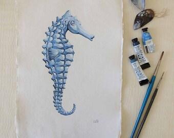 Seahorse original watercolour illustration painting seaside shore ocean beach coastal collection sea shell sea creature