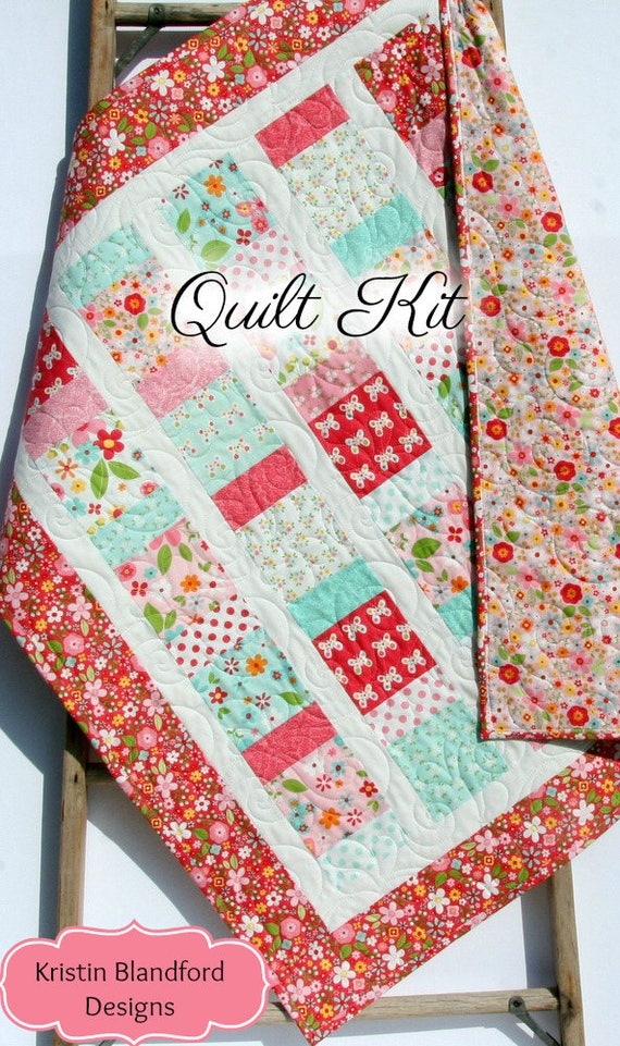 Baby girl quilt kit garden girl riley blake fabrics craft like this item solutioingenieria