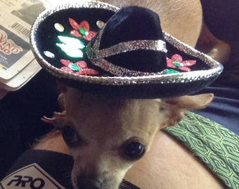 Dog hat or Cat Hat Mexican hat Sombrero