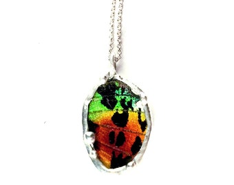 Sunset Moth Butterfly Wing Necklace
