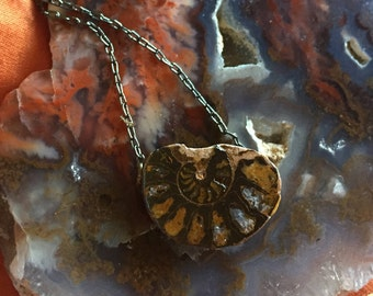 Nautilus Shell Geode Gunmetal Necklace